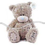 Toy Teddy Bear,
